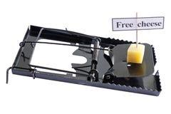 Formaggio libero Immagine Stock Libera da Diritti