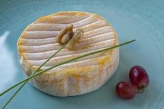 Formaggio a pasta molle francese con i batteri rossi della sbavatura dai Vosgi fotografia stock libera da diritti