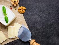 Formaggio a pasta molle francese del camembert con lo spazio della copia Fotografia Stock
