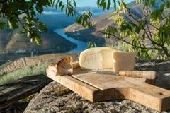 Formaggio a pasta molle portoghese tradizionale della mucca Fotografie Stock