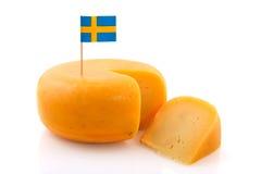 Formaggio svedese Fotografia Stock