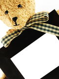 Formal Bear with Photo Frame Royalty Free Stock Image