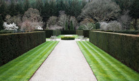 Formal English garden Stock Images