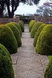 Formal English Garden. With manicured bushes and walkway stock photo