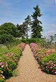Formal English Garden with Flower strewn Path Stock Photos