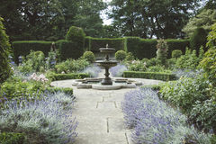 Formal English Garden with Fountain and Lavender Beds. Royalty Free Stock Images