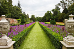 A Formal English  Landscaped Garden. A Formal  English Landscape garden with Box Hedging and Statues on Plinths Stock Images
