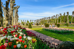 Formal Flower Garden Stock Images