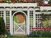Formal garden. White gate to the formal garden with spring blooming tulips Stock Photos