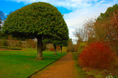 Formal Garden. Crathes Castle and Garden Stock Image