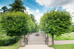 Formal garden entrance with shaped hedges and trees Royalty Free Stock Image