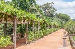 Formal garden on a farm Stock Image
