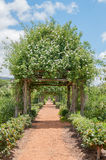 Formal garden on a farm Royalty Free Stock Images