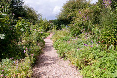 Formal garden flower bed. With a pathway running through it Stock Image