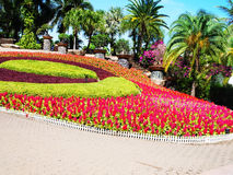 A formal garden. Of flowers , leafy plants and  various kinds of trees is designed in curved patterns Stock Photos