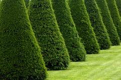 Formal garden in France Stock Photos