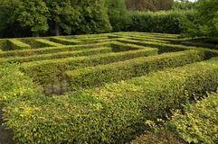 Formal garden in France Royalty Free Stock Image
