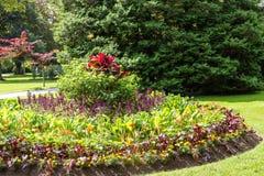 Formal Garden in Green Lawn Stock Photo