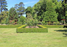 Formal garden with hedge and roses Stock Photo