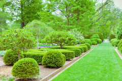 Formal garden at spring Stock Photography
