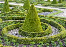 Free Formal Gardens Royalty Free Stock Image - 41555096