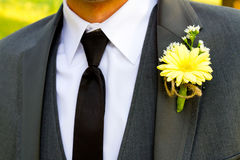 Formal Groom and Boutineer Stock Image