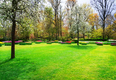 Formal spring garden Royalty Free Stock Photography