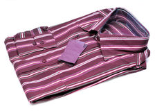 Formal striped shirt Stock Photo
