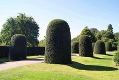 Formal topiary garden. Royal Botanic Gardens in London, England. Stock Photography