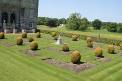 Formal yew topiary garden Royalty Free Stock Image