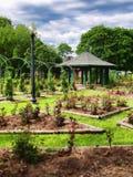 Formalny ogród różany obraz stock