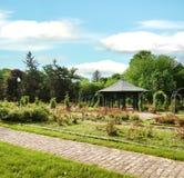 Formalny ogród różany Fotografia Royalty Free