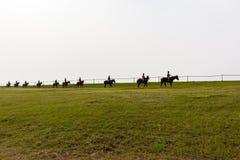 Formação dos cavalos de raça Fotografia de Stock Royalty Free