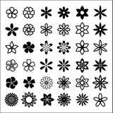 Formas del brote de flor Fotos de archivo libres de regalías