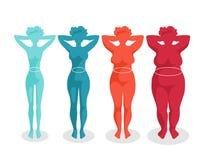 Formas del cuerpo femenino - cuatro tipos Imagen de archivo