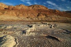 Formas del mar muerto Imagen de archivo libre de regalías