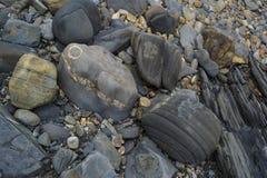Formas e testes padrões abstratos: Seixos de pedra na praia: Retrato O Imagens de Stock