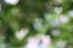 Format mjukt ljus för bakgrundsbokeh hjärta - grön oskarp pastellfärgad färg, bakgrund för abstrakt konst för valentin grafisk lj Royaltyfri Bild