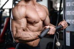 Formation belle de bodybuilder dans les haltères sexy d'ascenseur d'homme de gymnase Images libres de droits