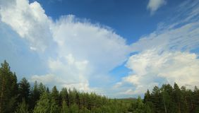 Formation of a cumulonimbus cloud over boreal forest Royalty Free Stock Photography