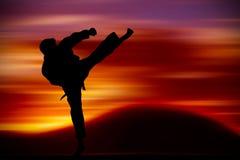 Formation d'arts martiaux image libre de droits