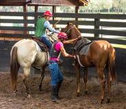 Formation d'un jeune cheval de course en Floride Photographie stock libre de droits