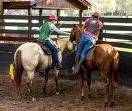 Formation d'un jeune cheval de course en Floride Image stock