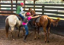 Formation d'un jeune cheval de course en Floride Images stock