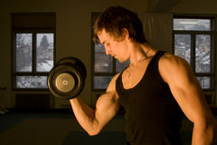 Formation de bodybuilder Photo stock