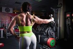 Formation de bodybuilder de femme Photos stock