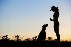 Formation de chien Photographie stock libre de droits