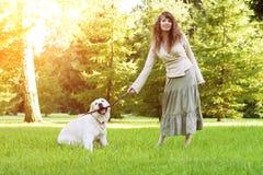 Formation de chien Fille avec le chien d'arrêt jouant en parc Femme wal Photographie stock libre de droits