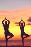Formation de couples de yoga dans le coucher du soleil dans la pose d'arbre Images libres de droits