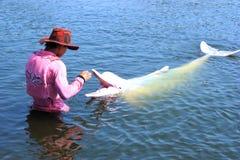 Formation de dauphin, monde de mer d'oasis, Chanthaburi Thaïlande Photos libres de droits